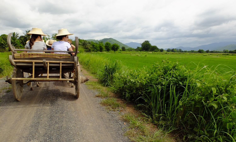 thaitouch01
