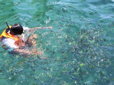 1 Display Samet Snorkleling