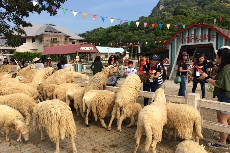 2 Swiss Sheep Farm