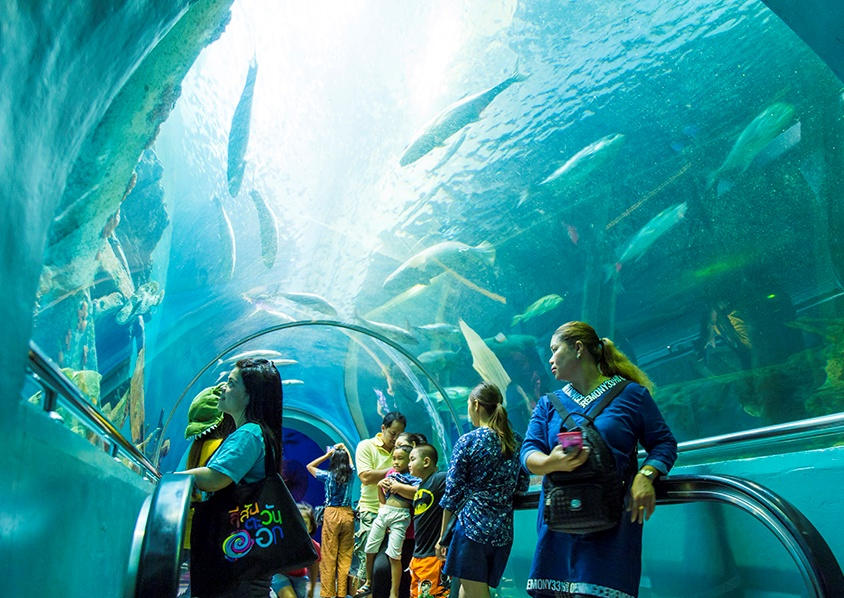 5 Rayong Aquarium