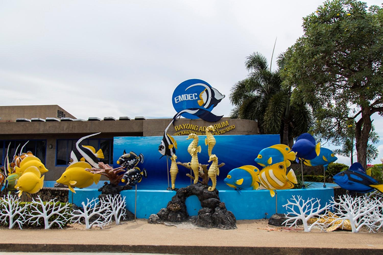 6 Rayong Aquarium
