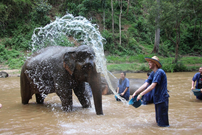 Elephant Care Center 1