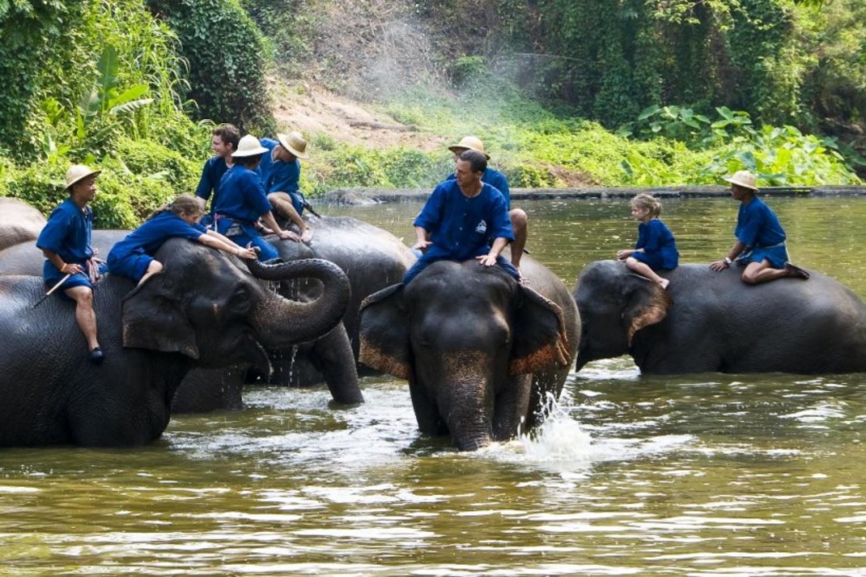 Elephant Care Center 5