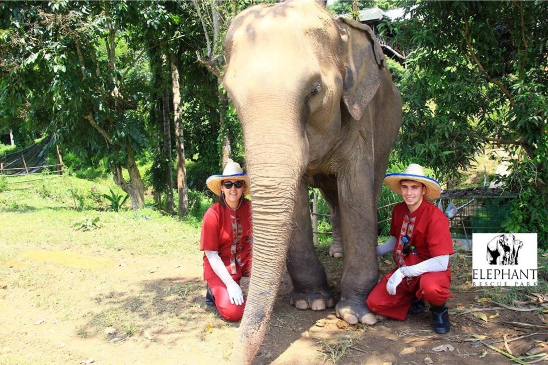 Elephant Rescue Park 5