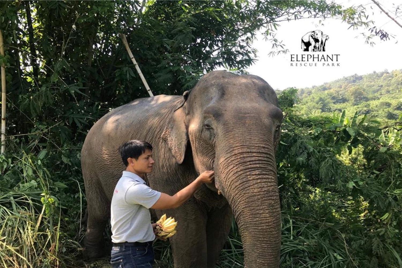 Elephant Rescue Park 8
