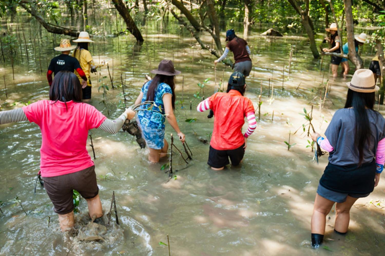 Klong Kone Samut Songkram 5
