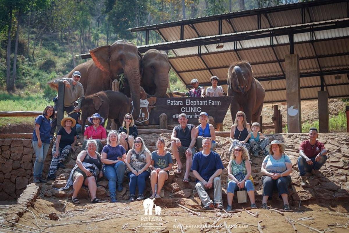 Patara Elephant Farm 4