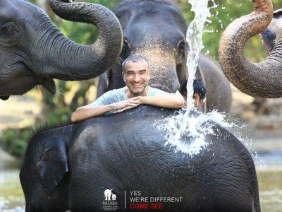 Patara Elephant Farm 6