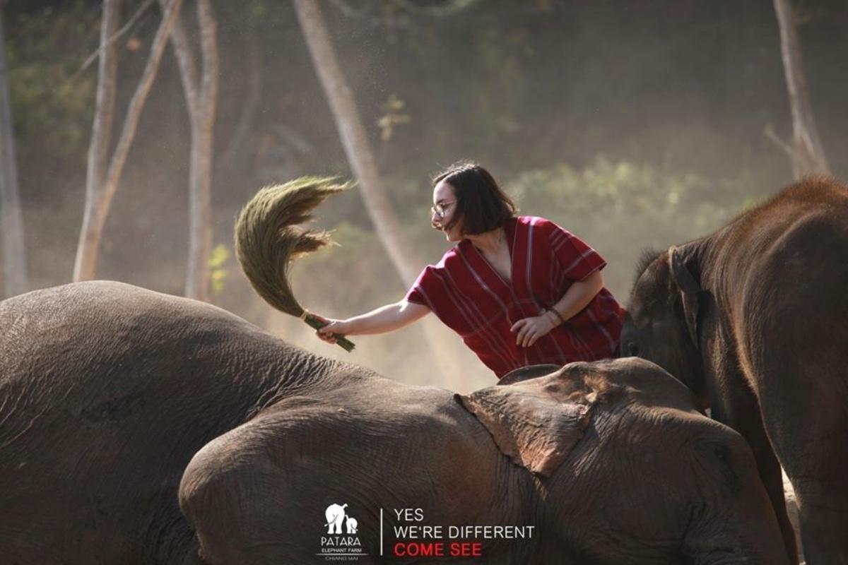 Patara Elephant Farm 9