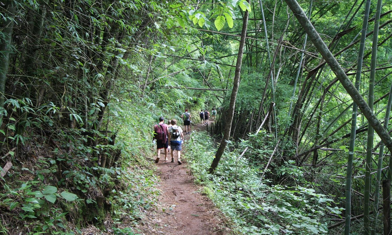 Trekking 6