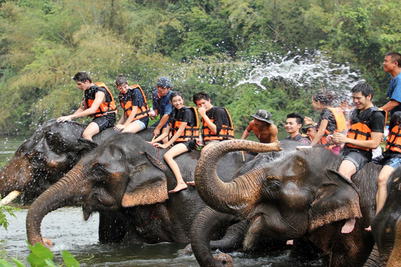 elephant camp 02